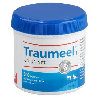 traumeel-schmerzmittel-geleng-arthrose